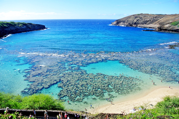 Hanauma Bay Snorkeling Tours - Maui