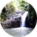 Private Tours Oahu Hawaii Water Fall Hiking Tour