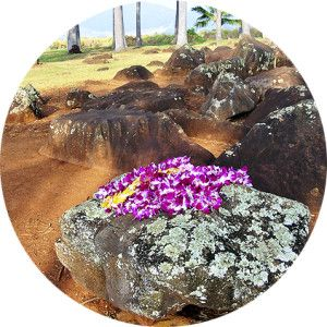 Private Tours Oahu Hawaii Historical Tours