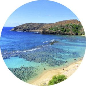 Private Grand Circle Island Tours Oahu Hawaii Nature Tours