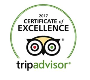 best-rated-tours-oahu-trip-advisor