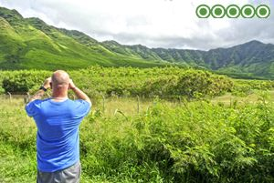 best-reviewed-tours-hawaii