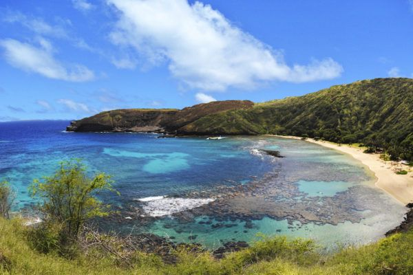Our most popular private tour Oahu