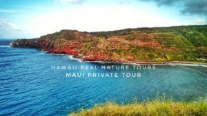 maui-private-tours