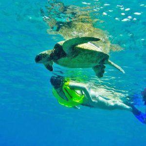 snorkeling-north-shore-oahu