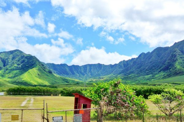 Hidden Adventures On Oahu